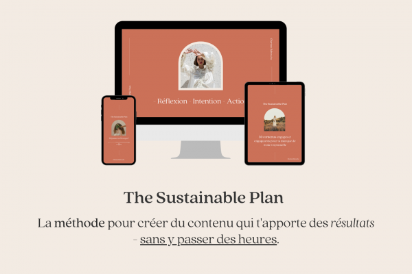 The Sustainable Plan